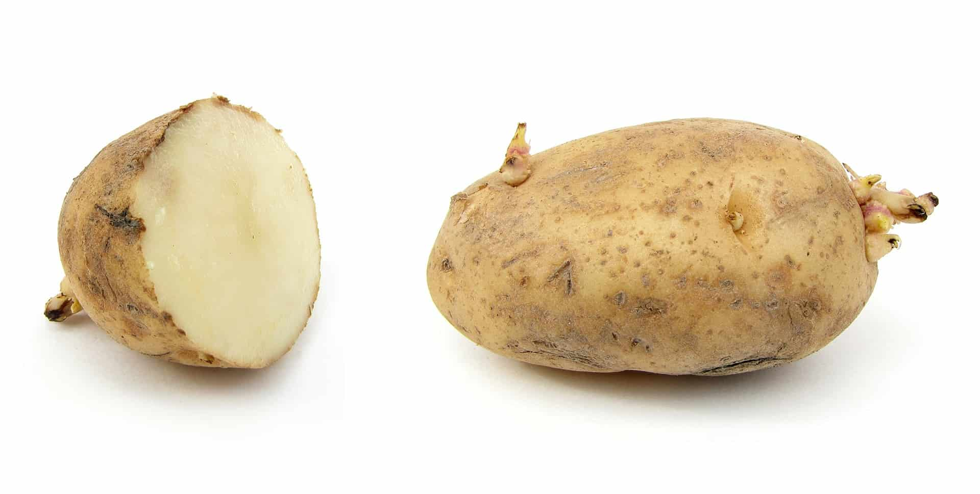 Potato to Cure Warts